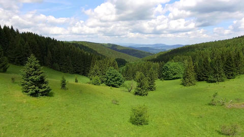 Aerial view of the summertime in mountains.Poland. Pine tree forest and clouds o Footage