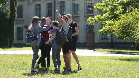 Diverse group of students gathering on park lawn Footage