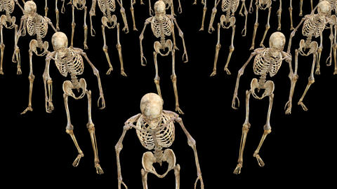 A crowd of skeletons are walking