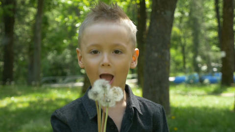 Slow motion of little boy smiling and blowing dandelion with beautiful green tre Footage