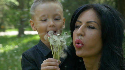 Beautiful mother and cute little boy blowing together dandelion seeds smiling an Footage