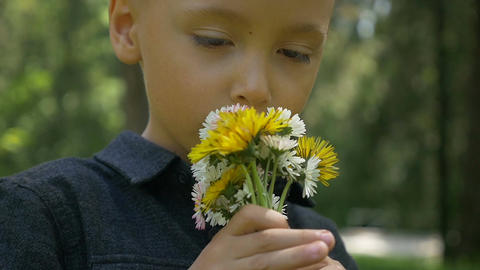 Closeup of adorable kid smelling spring flowers and feeling cheerful in the natu Footage
