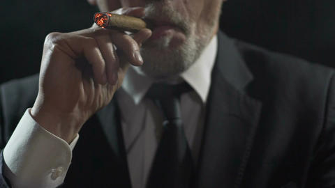 Self-confident rich businessman inhaling cigar smoke, enjoying luxury tobacco Footage
