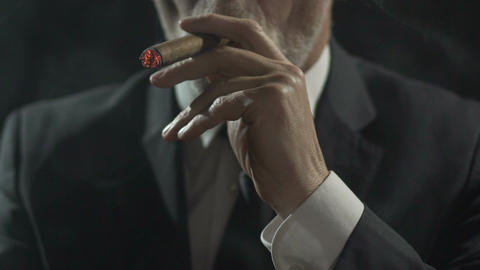 Rich male in suit enjoying process of smoking expensive cigar, slow-motion Live Action
