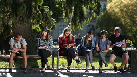 Concentrated classmates learning together outdoors Footage