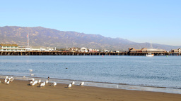 Santa Barbara Harbor and shore Footage