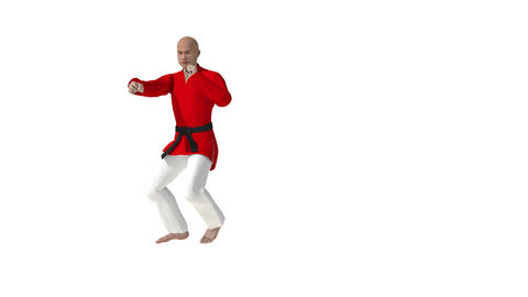 Man Training Taekwondo Or Karate Man Jumping 3d animation with alpha Animation