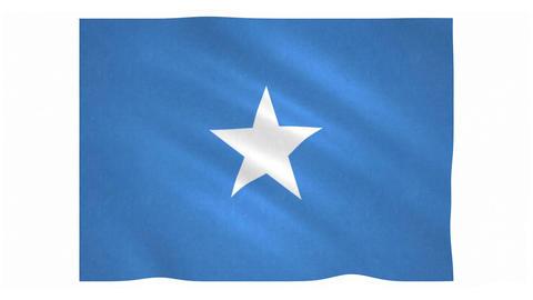 Flag of Somalia waving on white background Animation
