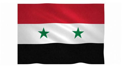 Flag of Syria waving on white background Animation