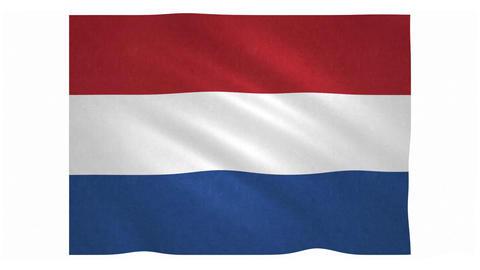 Flag of the Netherlands waving on white background Animation