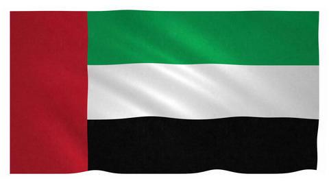 Flag of the United Arab Emirates waving on white background Animation