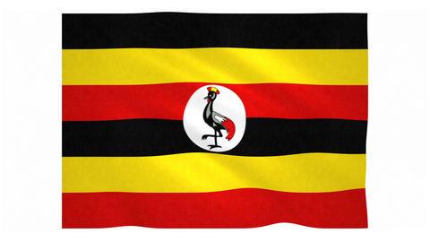 Flag of Uganda waving on white background Animation