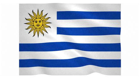 Flag of Uruguay waving on white background Animation