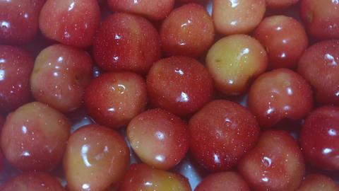 Fresh cherry v2 Footage