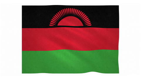 Flag of Malawi waving on white background Animation
