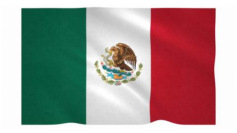 Flag of Mexico waving on white background Animation