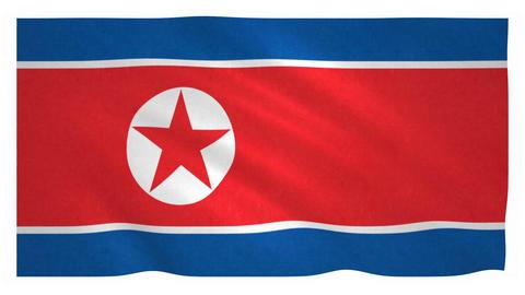 Flag of North Korea waving on white background Animation