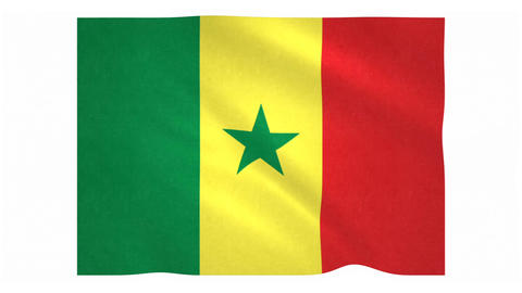 Flag of Senegal waving on white background Animation