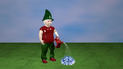 Flowers dwarf Animation