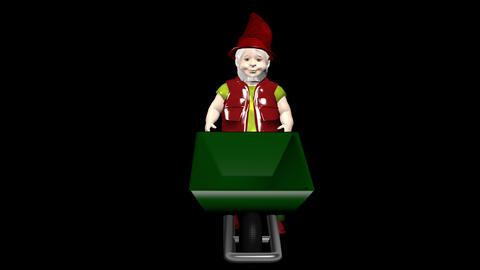 Dwarf with wheelbarrow Animation