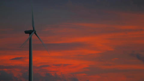 Wind Farms At Sunset 1