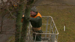 4K Ungraded: Middle-Aged City Service Worker Cuts Down Branches of Trees Footage