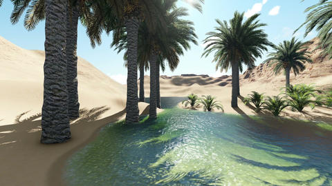 3d rendering - Oasis in the desert Animation