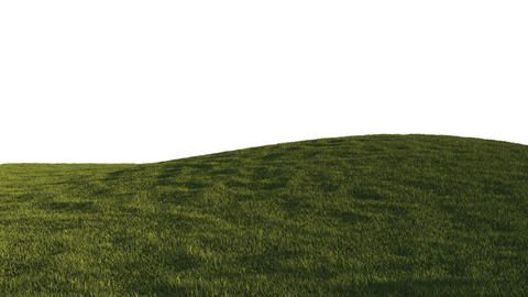 Green grass background texture made in 3d software Animation