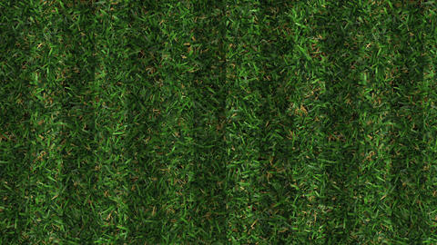 Green grass background texture made in 3d software Stock Video Footage