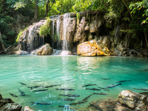 beautiful Erawan waterfall in Kanchanaburi フォト