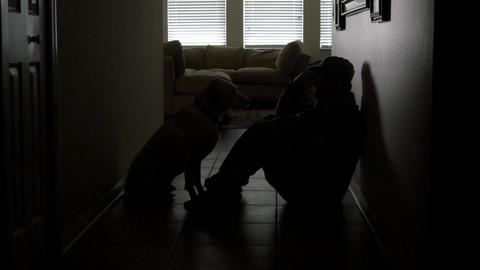 A soldier's dog comforts him during depression, 4K Footage