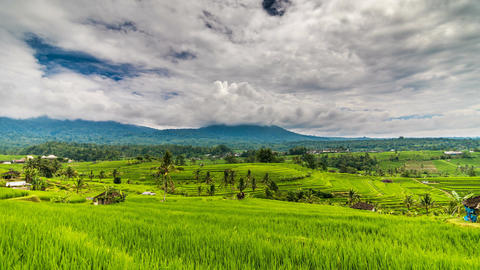 Rice terrace and mountains time lapse Footage