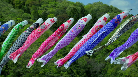 Flowing carp streamers Footage