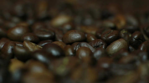 The Coffee Beans Live Action