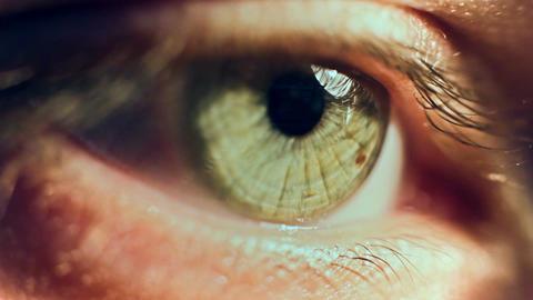 Eye Iris 2 Image