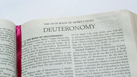 The Book Of Deuteronomy Footage