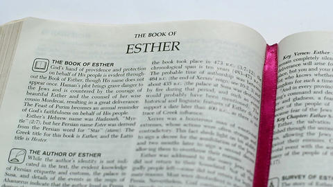 The Book Of Esther Footage