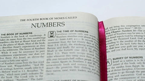 The Book Of Numbers Footage