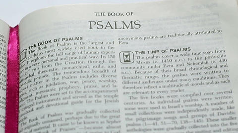 The Book Of Psalms Footage