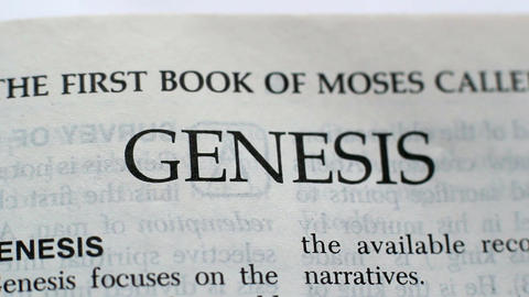 The First Book Of Genesis 3 Footage