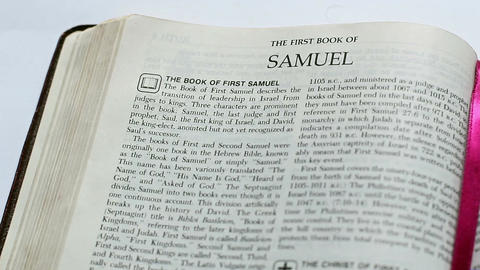 The First Book Of The Samuel Footage