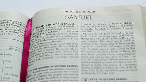 The Second Book Of The Samuel Footage