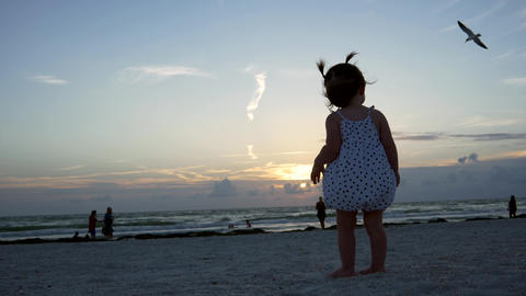 Cute little girl watches a bird fly at the beach at sunset, 4K Footage
