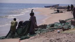 Fisherman cleaning the nets,Batticaloa,Sri Lanka Footage