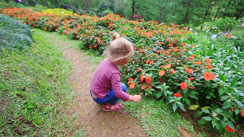 Little Girl Squats Smells Flowers on Ground Path in Park Footage