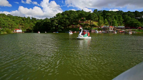 Swan Pedal Boat with Family Passes by against Forestry Banks Stock Video Footage