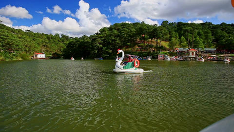 Swan Pedal Boat with Family Passes by against Forestry Banks Footage