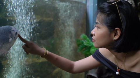 Young Thai girl looking at fishes in oceanarium Footage