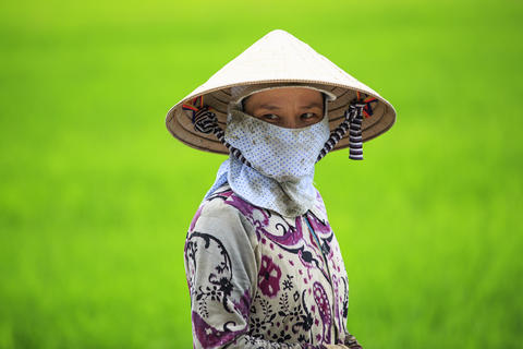 Vietnamese Farmer Foto