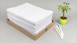 Documents decreases